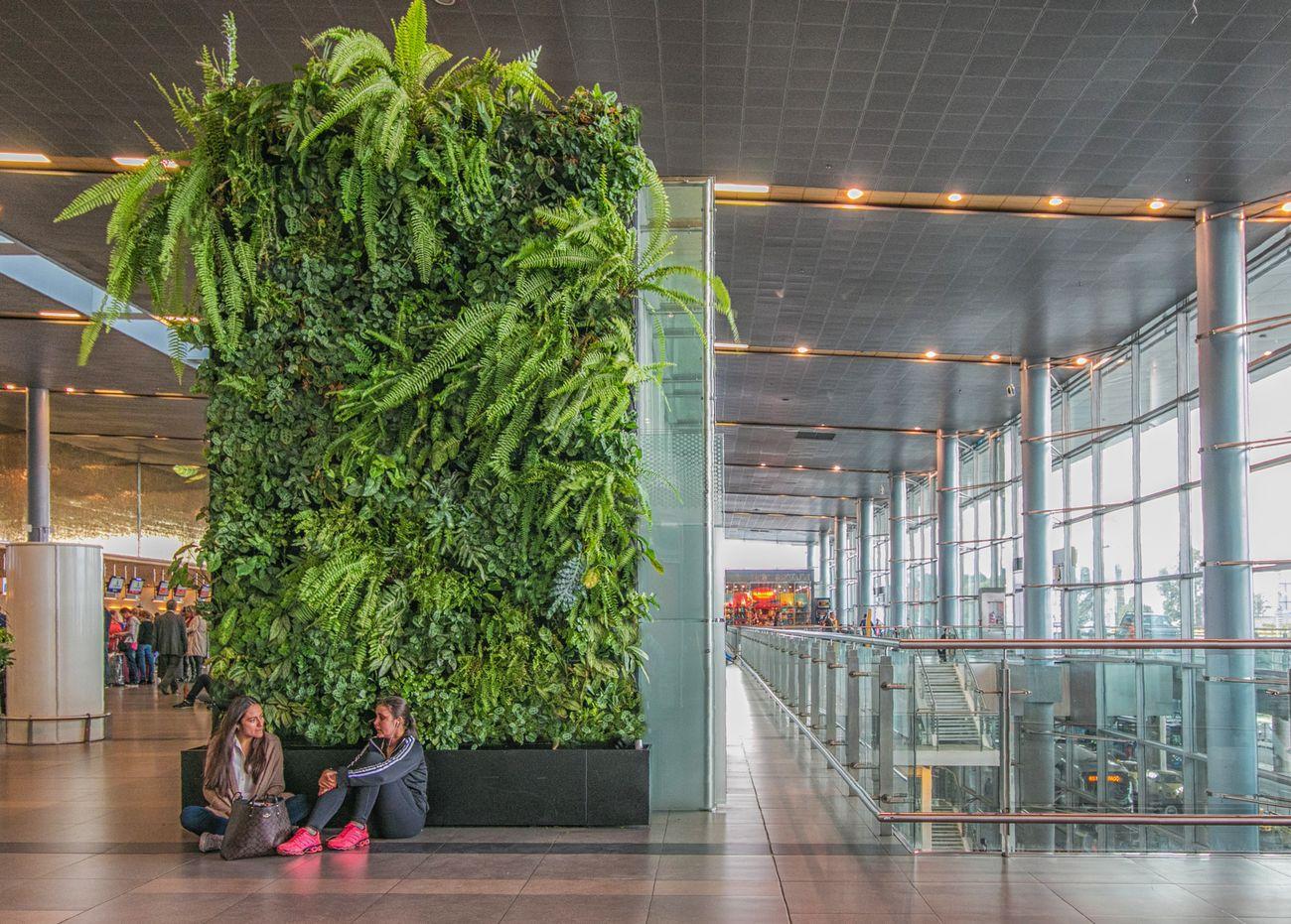 Jardines verticales bogot y colombia vert n - Jardines verticales de interior ...