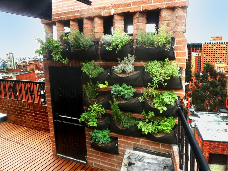 Macetas colgantes y materas bogot como hacer un jard n for Plantas para muros verdes verticales