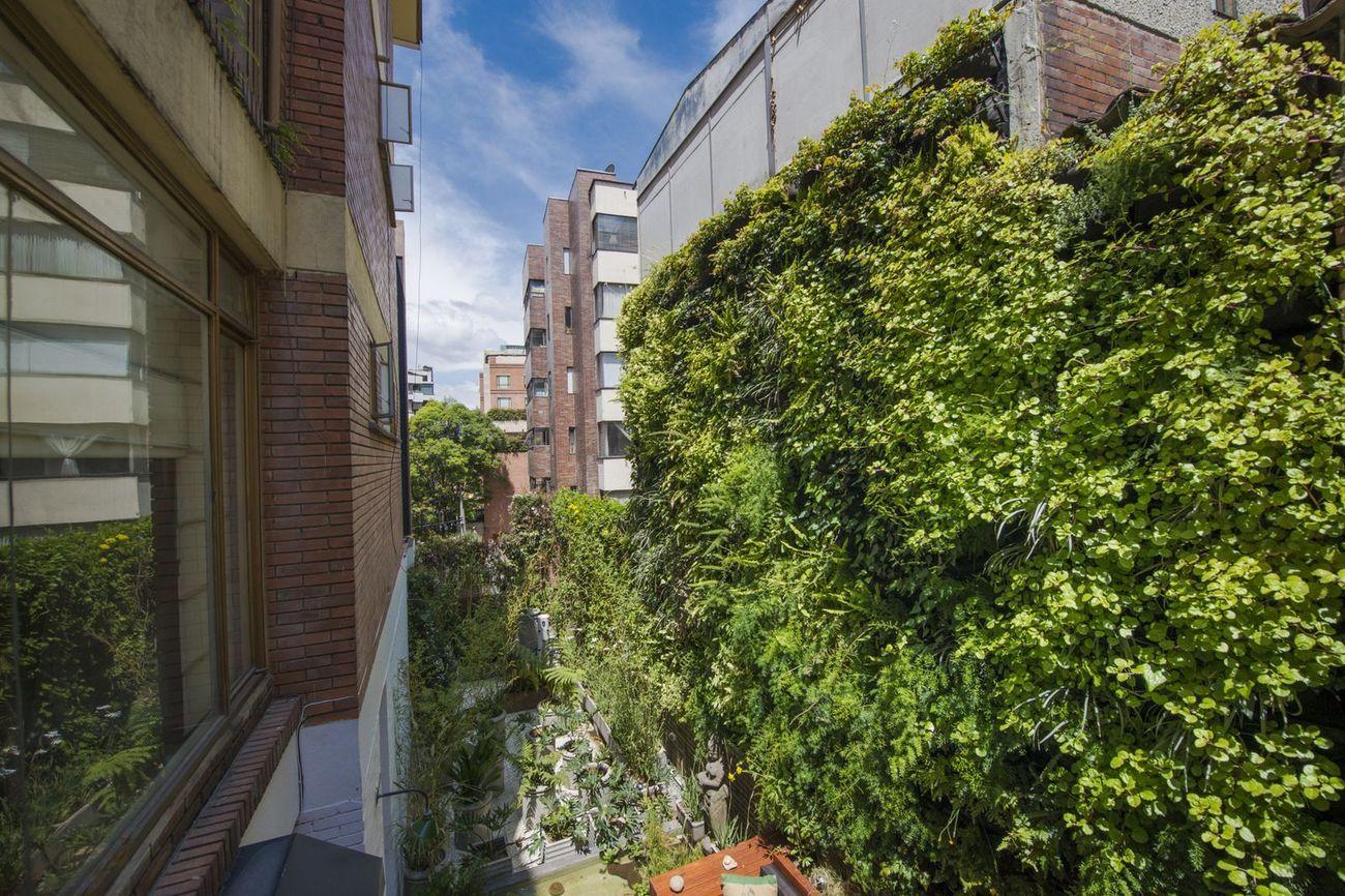 Como hacer un muro verde muro verde colombia ofrecen for Materiales para un muro verde