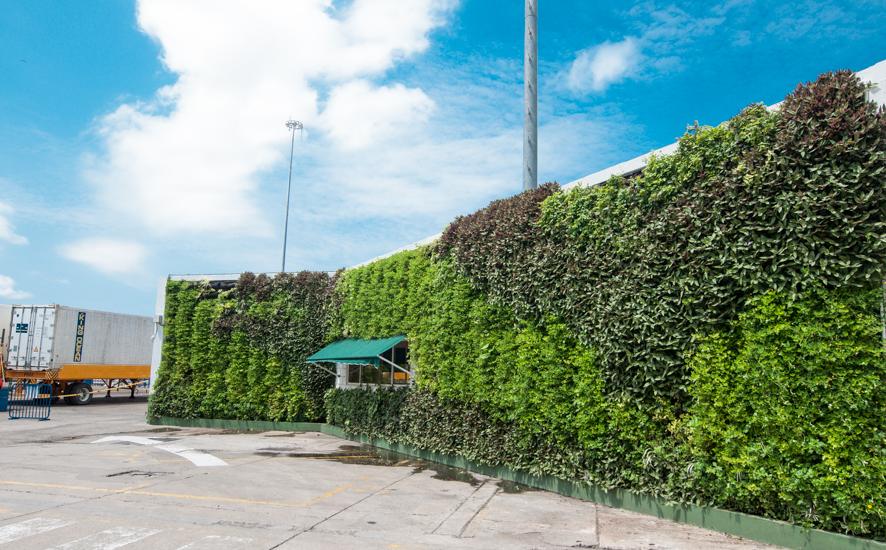 Jardines verticales bogot y colombia vert n for Muros verdes naturales