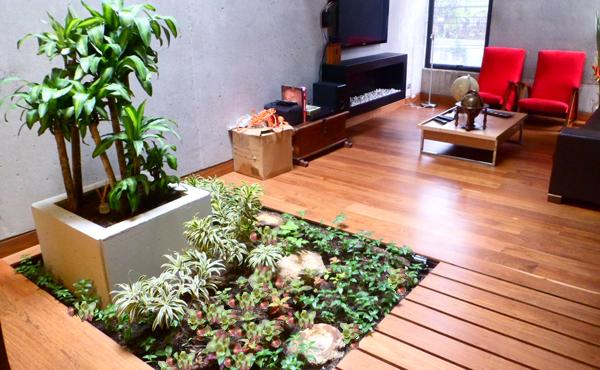 Paisajismo y decoraci n de jardines bogot y colombia vert n for Jardines interiores modernos