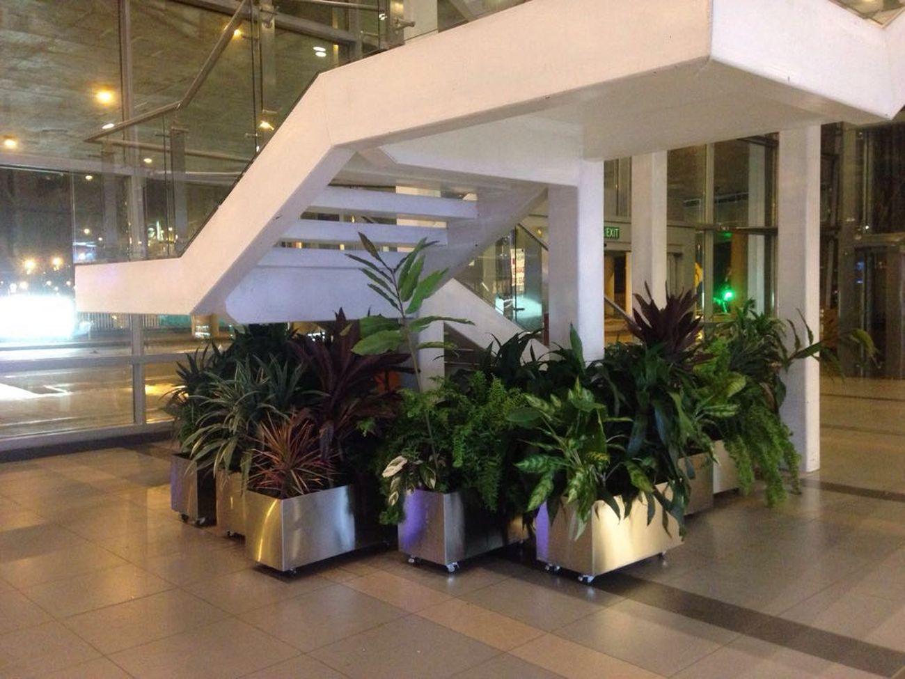 Jardines interiores en edificios elegant espacios - Restaurante noto marbella ...