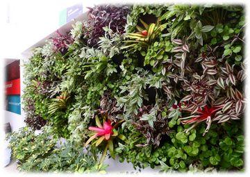 Jardines verticales contenido for Techos verdes y jardines verticales